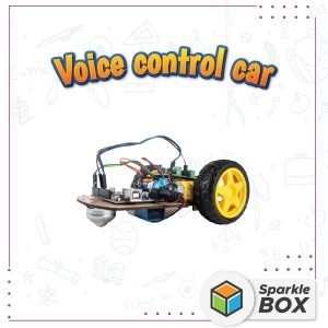 Buy Voice Control Car for Kids Online