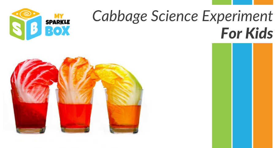 cabbage experiment for kids