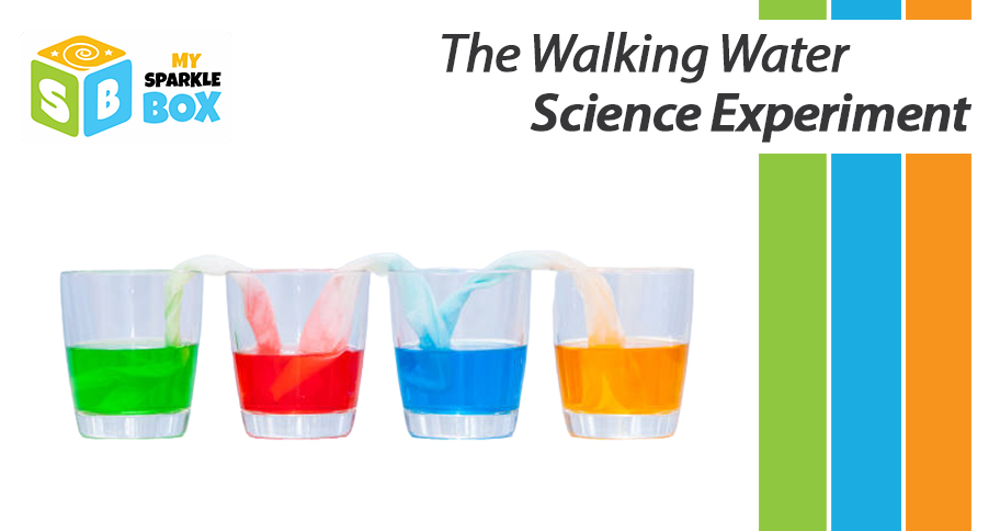 walking water experiment for kids to understand capillary action